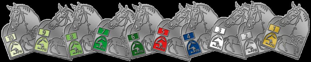Die Reitabzeichen der Deutschen Reiterlichen Vereinigung (FN)